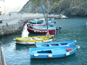 Vernazza's Harbour